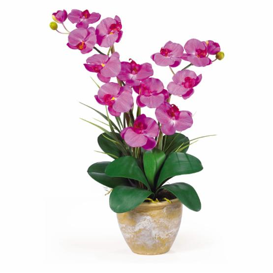 Nearly Natural Double Stem Phalaenopsis Orchid Silk Flower