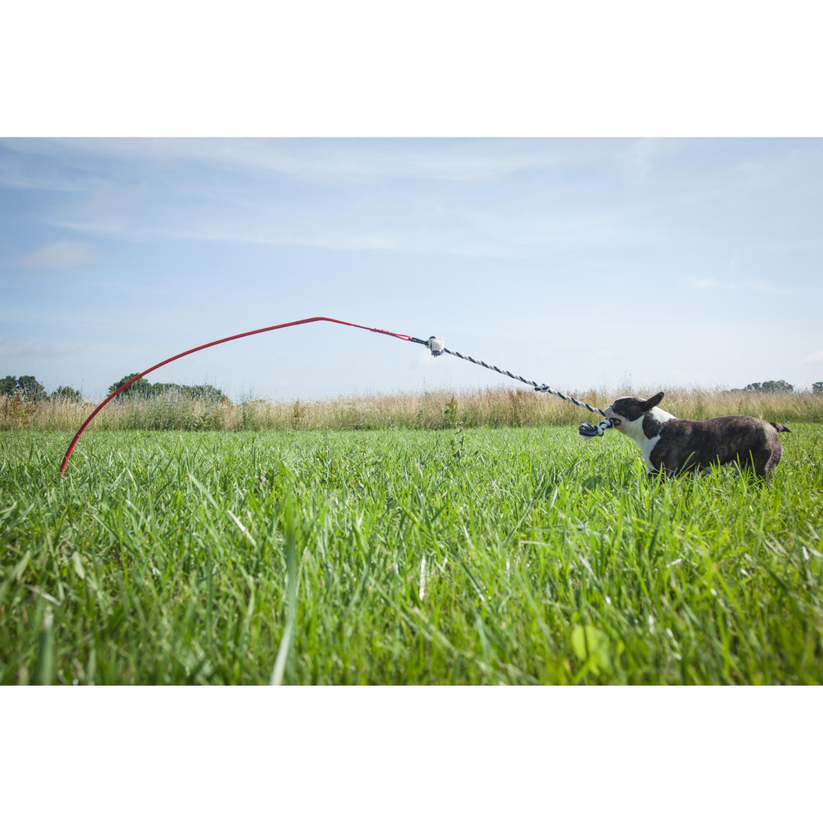 Tether Tug Outdoor Dog Toy - XLTT--TWR