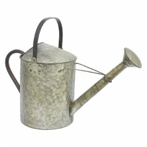 Three Hands Galvanized Metal Watering Can
