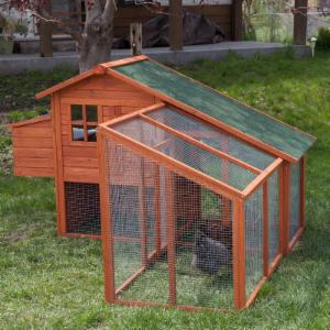 Boomer & George Deluxe Chicken Coop with Exercise Pen