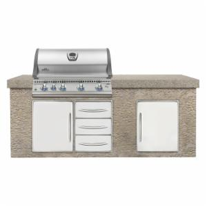 Napoleon LEX BILEX605RB Built-in 605 Grill with Infrared Bottom and Rear Burners